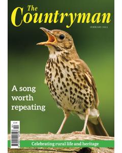 The Countryman Magazine