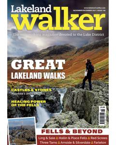 Lakeland Walker